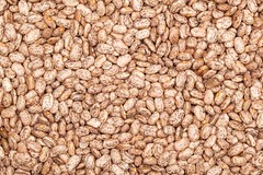 Food Ingredients - Pinto Beans (dgilder) Tags: food usa austin beans texas ingredients backgrounds grocery pinto pintobeans foodingredients staplefoods