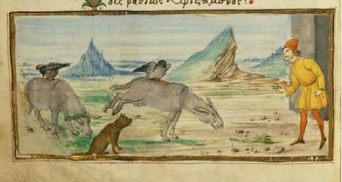 Corvus, Asinus et Lupus
