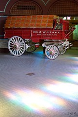 Bud Wagon 2 (Mike Miley) Tags: vacation horse usa wagon tour stlouis mo brewery stl stable hitch clydesdales budbudweiser