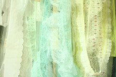 lace (laurenwinterdotco) Tags: roses sun vintage soft lace feminine pastel sheer ghosting mothermary russiannestingdolls amateurphotography canonxsrebel bloomingleopold
