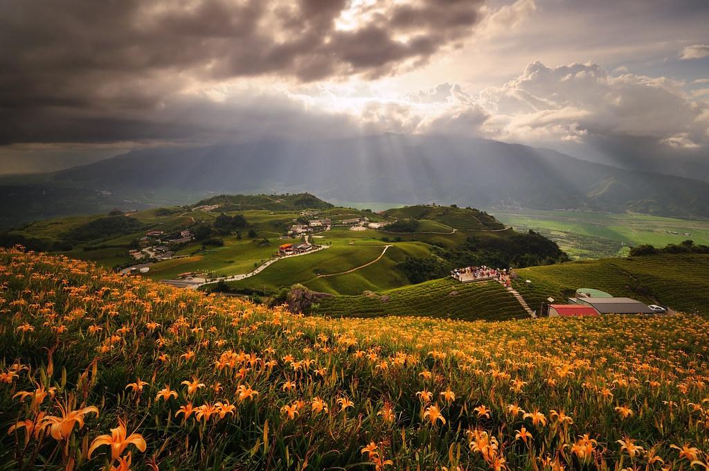 陽光灑落金針山