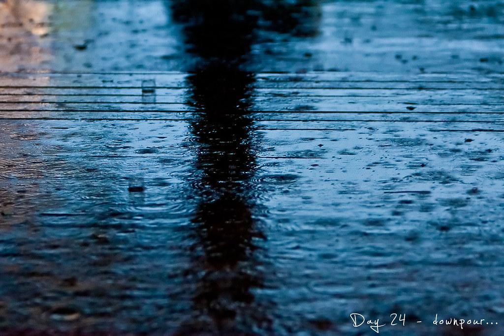 project 365, day 24, rain, 024/365, downpour