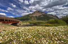 Mt. Crested Butte (richietown) Tags: bridge flowers wild mountain topv111 canon colorado 7d crestedbutte sigma1020mm mtcrestedbutte richietown