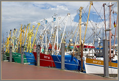 Fishing boats in Ditzum harbor (Explore) (Bert Kaufmann) Tags: haven color colour colors germany deutschland harbor town fishing dorf village explore ostfriesland fishingboats fishingboat dit ems allemagne duitsland kleur emden vissersboot kleuren niedersachsen eems ditzum reiderland explored vissersdorp erholungsort nedersaksen vissersvloot jemgum landkreisleer