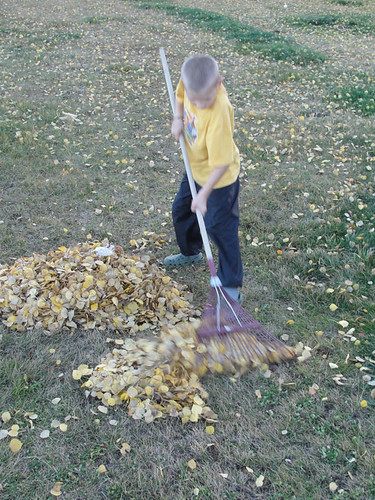 Cheetahboy raking leaves.