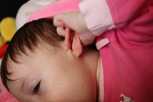 baby ears1