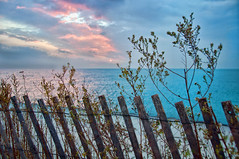 I'll keep my eyes fixed on the sun (pixelmama) Tags: sunrise lakemichigan montroseharbor chicagoillinois hff chasinglight cagetheelephant fencefriday shakemedown lakefrontfence