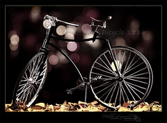 Bicycle since - 1886 (Halah Al-yousef ||||) Tags: macro bicycle night canon lens leaf since 7d 100 bouquet mm ef 1886     halah  ef100mm            alyousef