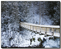Bridge to Winter (Lisa-S) Tags: bridge trees winter snow ontario canada ice lisas suspended invited belfountain caledon belfountainconservationarea 50d 4599 platinumheartaward gappool copyright2011lisastokes needinvitedate