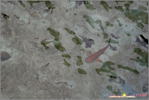 Apulit Island Day 3-38