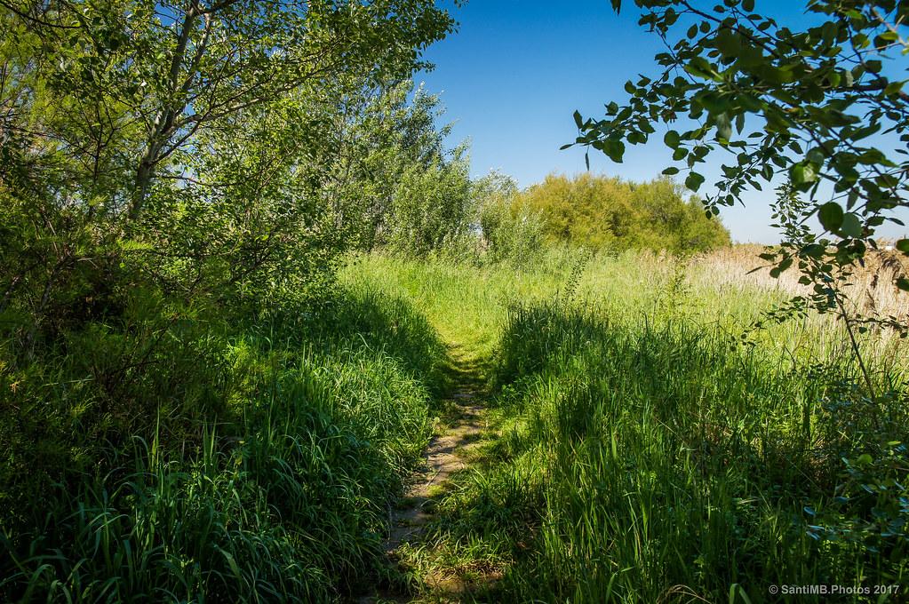 Caminos escondidos