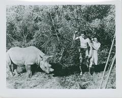 7000-2065 (AliceJapan ʕ •ᴥ•ʔ) Tags: johnny maureen mgm 1934 osullivan weissmuller tarzanandhismate johnnyweissmuller maureenosullivan