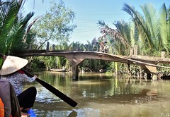 barque et vlo au Mkong (pontfire) Tags: trip travel people woman holiday plant man flower river children boat asia ship ships vietnam tug tugs mekong baots