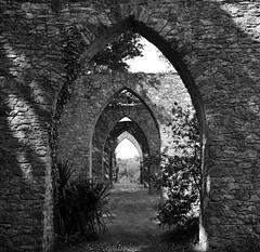 Ruines du funiciulaire de la mine de fer de Segr (wandalouzy) Tags: france nikon ruins europe slate loire ruines maineetloire anjou segr d700 minedefer deletedbydeletemeuncensoredgroup