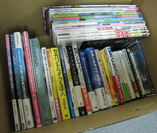 Second Life Books published in Japan (Almost RUBBISH!)