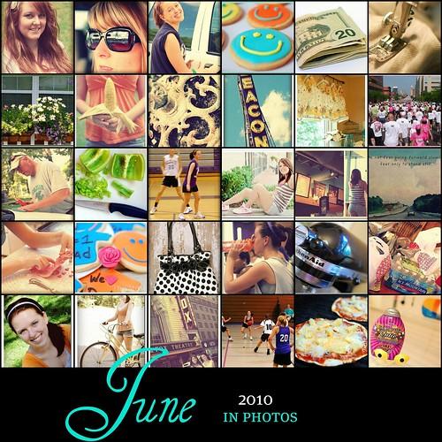 June 2010 365 Mosaic
