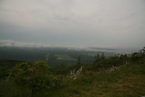 L'Acadien