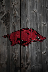 Arkansas Razorbacks Wood iPhone 4 Background (anonymous6237) Tags: wood wallpaper college sports fence logo football phone background bigten wallpapers ncaa logos bcs iphone collegefootball big12 bigeast pac10 iphone4