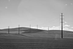 Palouse poles (Matt Halm) Tags: bw washington nikon hills poles palouse d80