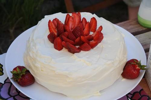 tesses-tårta-4juli2010