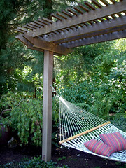 Hammock Trellis (lehua_mc) Tags: plants vancouver garden design washington backyard native structure trellis arbor shade hammock shadegarden zone8 naturescaping associationofnwlandscapedesigners