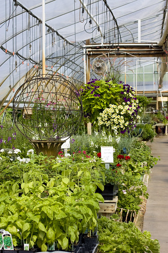 Heavenly Scent Herb Farm