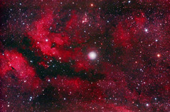 Sadr Region - IC1318 (kappacygni) Tags: canon butterfly eos nebula phd sadr deepspace celestron emission cygnus ed80 baader ic1318 450d eq6 Astrometrydotnet:status=solved qhy5 competition:astrophoto=2010 Astrometrydotnet:version=14400 Astrometrydotnet:id=alpha20100707176521 astro:subject=ic1318 astro:gmt=20100615t2330