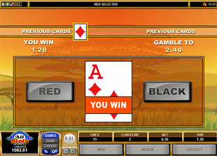 free Bush Telegraph gamble feature