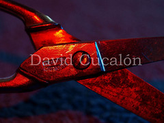 Forging on fire (David Cucaln) Tags: light stilllife david macro art fire scissors nophotoshop fuego 2010 fineartphotography paintwithlight foc tijeras e510 digitalcameraclub cucalon tisores davidcucalon