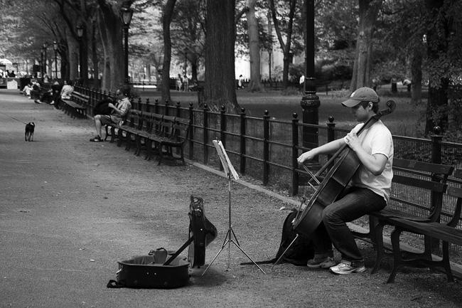 Central Park, Cellist