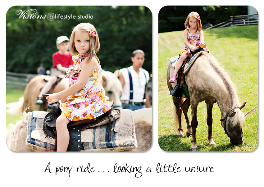 Horse Collage BLOG WM2