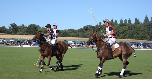 Polo at Veuve Cliquot Gold Cup