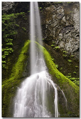Delighting Marymere Falls II (A Camera Story) Tags: longexposure lakecrescent washington hiking waterfalls nationalparks olympicnationalpark marymerefalls tamron1750mmf28 sonydslra700