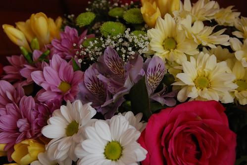 flori daruite cu dragoste