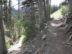 Fork to Buckhorn Lake off of Tubal Cain trail.