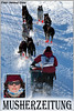 Finnmarkslopet 2010: Ingvild Lakseide Collage