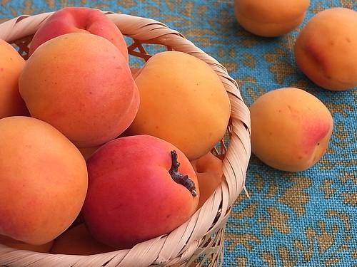 RIMG1594 Apricot Ann