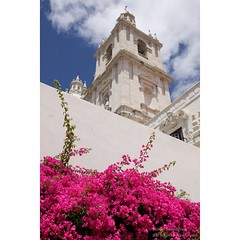 Pink, White and Blue (mikel.hendriks) Tags: pink blue white green portugal church st geotagged blauw district lisboa lisbon touch vincent explore monastery igreja vicente lissabon sideview wit so kerk built klooster alfama fora roze wijk mosteiro 1582 outsidethew
