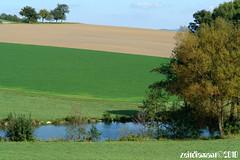 teich_DSC09253 (zeitdiamant) Tags: landscape farming landwirtschaft agriculture teich baum landschaften weiher