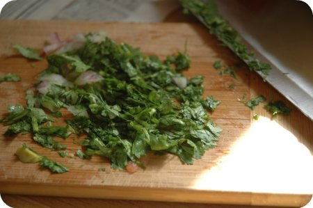 guacamole recipe: cilantro