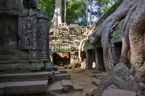 Ta Phrom, Angkor Wat Complex