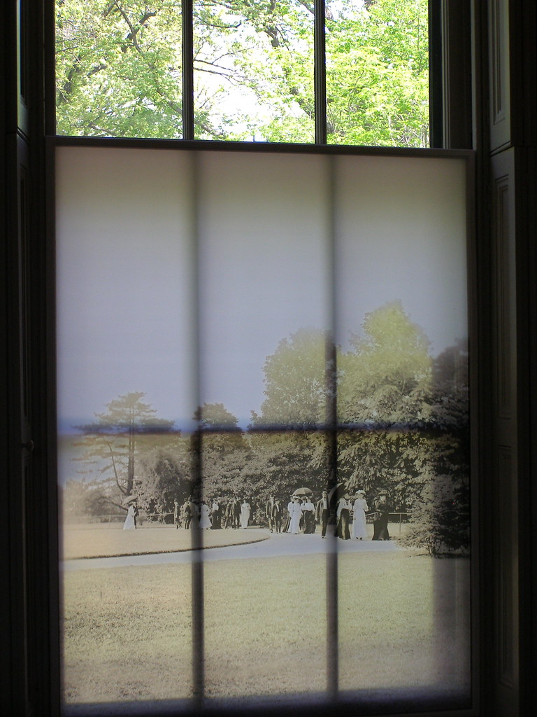 Window Shade with Photo Print