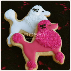 White & Pink Poodle (rosey sugar) Tags: pink animal cookie decoration sugar celebration icing piping brithday royalicing sugarcraft decorativecookie