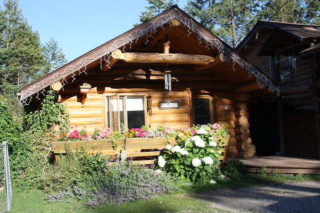 log cabin Studio