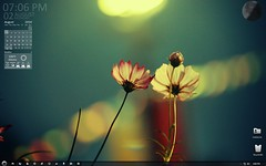 desktopflowers (Meskarune) Tags: desktop windows rainlendar windows7
