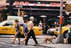 extreme street (~RichArtpix~) Tags: newyorkcity urban color dogs bars neon manhattan streetphotography taxis busy neonlights myneighborhood urbanlife hilife sidewalksofnewyork dogwalker thehood colorgul busystreets urbancolor newyorkcitylife celebratinghumanity capturinglifeinamoment hilifebarandgrill