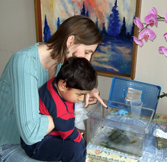 Looking at tadpoles with Oliver