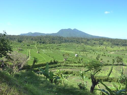 Bali-Tirtagangga (32)