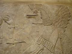 Eagle Headed Djinn (Aidan McRae Thomson) Tags: sculpture london ancient iraq britishmuseum mesopotamia reliefs antiquity assyrian neareast nimrud