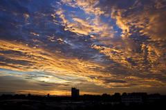Zonsondergang in Arnhem (Ingrid Fotografie) Tags: zonsondergang arnhem ingridfotografie thuisgevoel